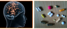 Drug Effects On The Nervous System Of Brain