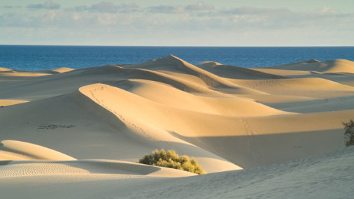 Visit the Great Dune of Pyla in France