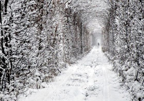 tunnel-of-love-ukraine1