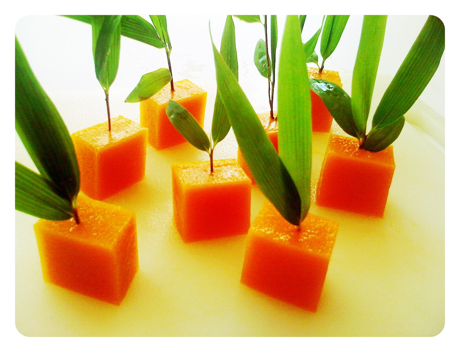 What is Agar Agar? What to choose..Agar or  gelatin!